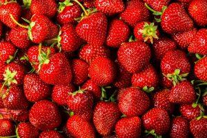 De belles fraises du djolof fraiches et brillantes